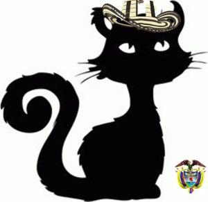 Gato extranero